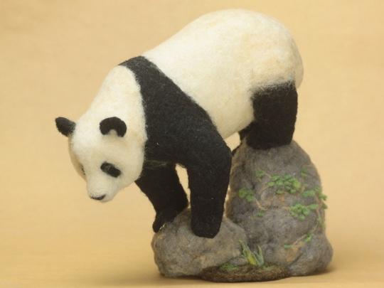 岩場のパンダ